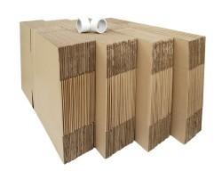 cartons standard