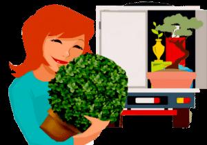 comment déménager ses plantes