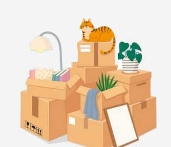 meilleurs cartons pour déménager